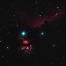 The Flame and Horsehead Neblae,                                RingoD123
