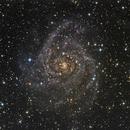 IC 342,                                Dan Wilson