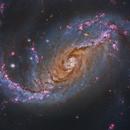 NGC 1672 - HST,                                Steve Cooper