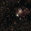 NGC2264,                                Don Holmgren