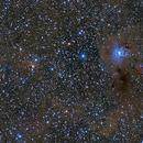 NGC 7023 & vDB 141,                                Apollo