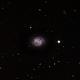 M58 - Barred Spiral Galaxy,                                David N Kidd