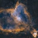 The Heart Nebula in Hubble Palette,                                PauRoche