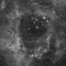 NGC2244,                                Phil Hosey