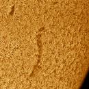 Solar chromosphere 20210425,                                Sergio Alessandrelli
