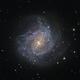 M83 - Southern Pinwheel Galaxy,                                Lucas Magalhães