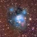 NGC7129 and NGC7142,                                José Manuel Taverner Torres