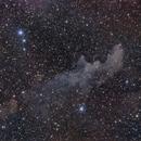 Witch Head Nebula,                                CarlosSagan