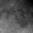 Snapshot birds,                                Christian Kussberger