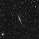 NGC 891,                                Madratter