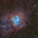 Sh2-206 ou ngc 1491 and PN Ou1- la nébuleuse de l'empreinte fossile,                                astromat89