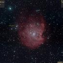Sh2-252 (NGC2174, Monkey Head Nebula, 2016.12.02, 32x6..7min=3h13min, convert2),                                Carpe Noctem Astronomical Observations