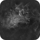 Sharpless in Auriga [Sh2-229] - The Flaming Star Nebula,                                G400