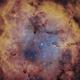 IC1396  Bicolor,                                Joschi