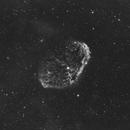 The Crescent Nebula (H-alpha),                                Damien Cannane