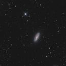 NGC 5005 & 5033 A couple of Spiral Galaxies in Canes Venatici,                                Elmiko