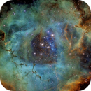 NGC 2237 Rosette Nebula in Narrowband ,                                Joshua Hufford