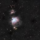 M42 in LRGB under London skyglow,                                Marco Gulino
