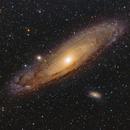 M31,                                Terry