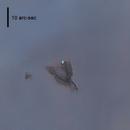 Slingshot Globule in IC 2944  -- Starless Version (almost),                                Alex Woronow