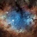 NGC 7822,                                Mike