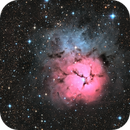 The Trifid Nebula,                                Chris