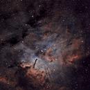 NGC 6820 and 6823,                                Rodd Dryfoos