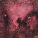 North America and Pelican Nebulae,                                Arvind H.