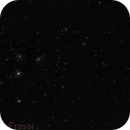 Galaxy Cluster II: Coma Berenices (Abell 1656),                                Roberto Frassi