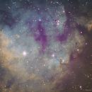 NGC7822 - Narrowband,                                Daniel Fournier