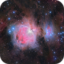 Orion Nebula Wide Field,                                Andrew Barton
