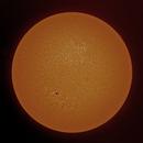 Sun FD in H-Alpha 29th of June 2021 - colorized,                                Arne Danielsen