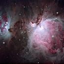 M42 - Orion,                                Rhett Herring