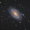 M81,                                Tristan Campbell