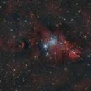 Cone Nebula,                                -Amenophis-