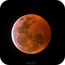 Blood Moon,                                Matt