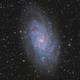 M33 HaLRGB,                                Sergiy_Vakulenko