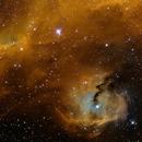 IC 2177, The Seagull Nebula,                                rat156