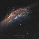 CA Nebula SHO,                                Thomas