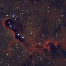 IC1396 - The Elephant Trunk Nebula,                                NocturnalAstro