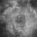 Rosette Nebula in Ha,                                Rathi Banerjee