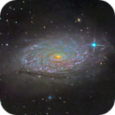 Sunflower Galaxy (Messier 63),                                Miles Zhou