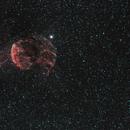 Jellyfish Nebula, IC 443, wide, NGC 2174,                                Alfred Leitgeb