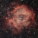Rosette Nebula in RGB,                                Paul Macklin