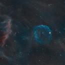 Sh2-308 Dolphin Head Nebula,                                YiWanG