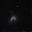NGC4567/4568,                                Tom Harrison