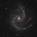 NGC 5247,                                Gary Imm