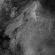 Pelican Nebula - IC 5070 - Ha,                                Thomas Richter