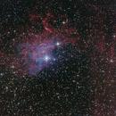 Flaming Star Nebula,                                Shibby