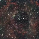 Rosette Nebula,                                Zach Coldebella